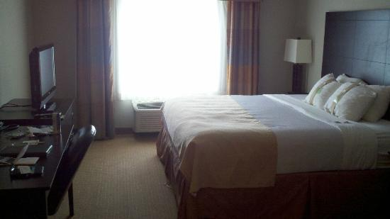 Holiday Inn Green Bay Stadium: Single-King Room