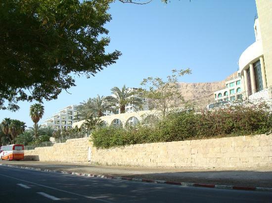 Daniel Dead Sea Hotel: ОТЕЛЬ