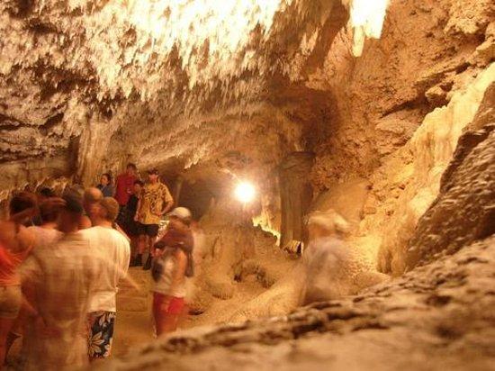 Saturno Cave : 2011