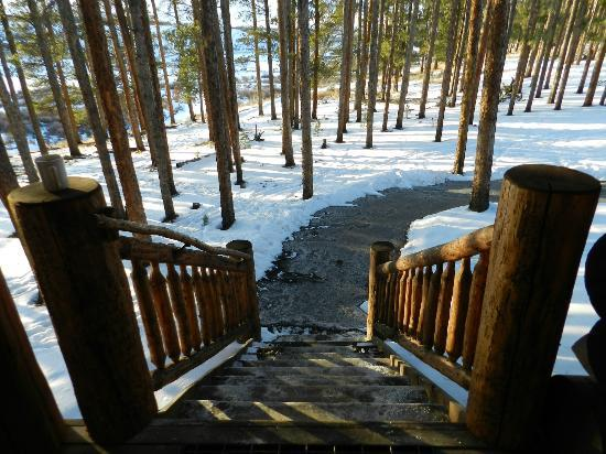 Devil's Thumb Ranch Resort & Spa: View from cabin stairs