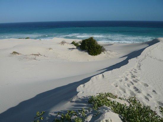 De Hoop Nature Reserve: Weiße Dünen vor blauem Meer