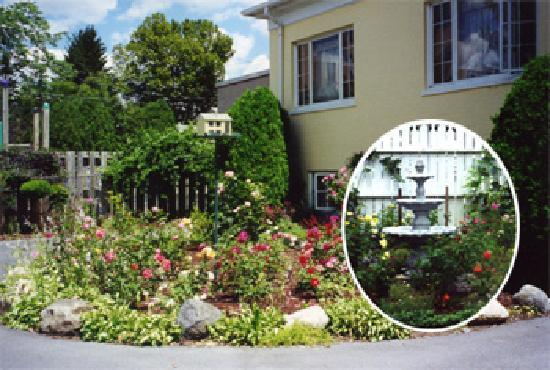 The Fox Inn Bed & Breakfast: Rose Garden