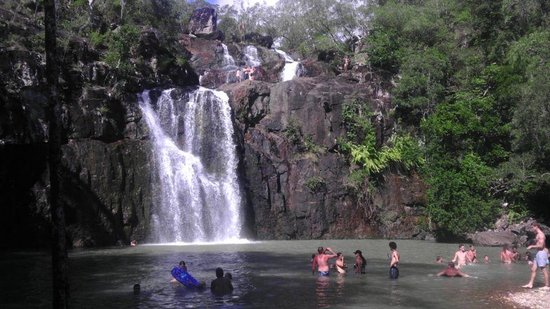 Cedar creek falls proserpine top tips before you go for Ceader creek