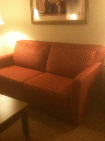 Hampton Inn & Suites Frederick-Fort Detrick: Sofa