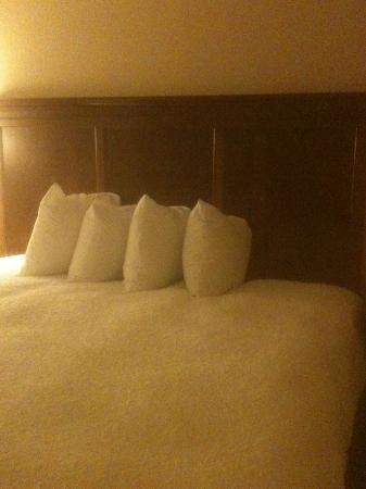 Hampton Inn & Suites Frederick-Fort Detrick: King Bed