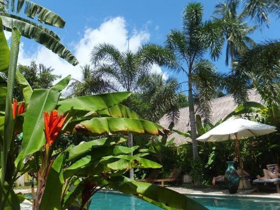 Cili Emas Oceanside Resort: So viel Grün...