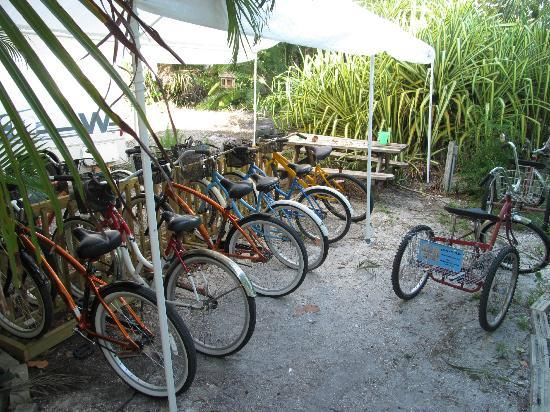 Periwinkle Cottages of Sanibel: Take your pick.