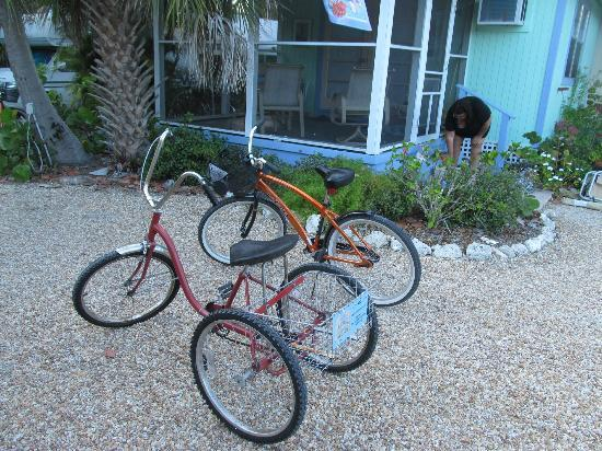 Periwinkle Cottages of Sanibel: Our rides.