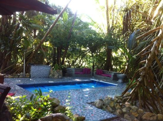 Maruba Resort Jungle Spa: mineral pool
