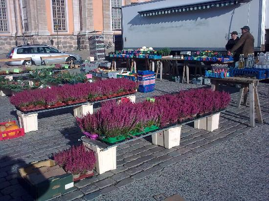 Kalmar Cathedral: Market in front of Cathedral