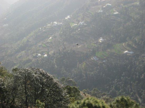 United 21 Resort Chail: the valley below Chail Crown