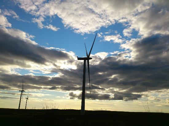 Whitelee Wind Farm Visitor Centre: Turbine