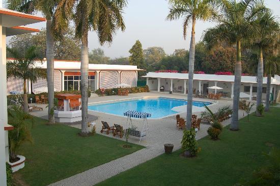 Hotel Chandela: Pool is nice too
