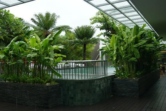 Mercure Bali Harvestland Kuta: Бассейн