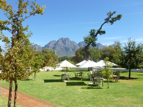 African Story Wine Tours: Where we had lunch!!!