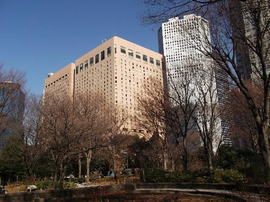Shinjuku Chuo Park : 新宿中央公園の写真その3