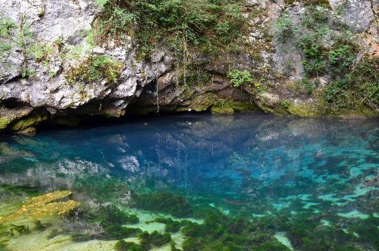 Polcenigo, Italie : La sorgente del Gorgazzo (affluente della Livenza)
