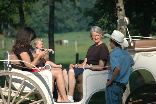 Cades Cove Riding Stables: Carriage ride in Cades Cove
