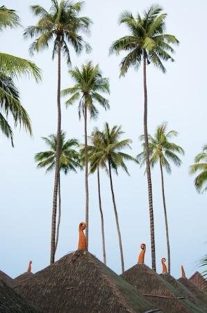 Lipa Bay Resort: вид из номера на бухту