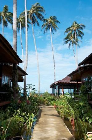 Lipa Bay Resort: вид на сад на море
