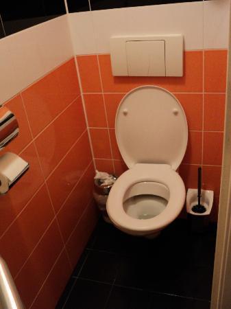 White Tulip Hostel: Ванная комната