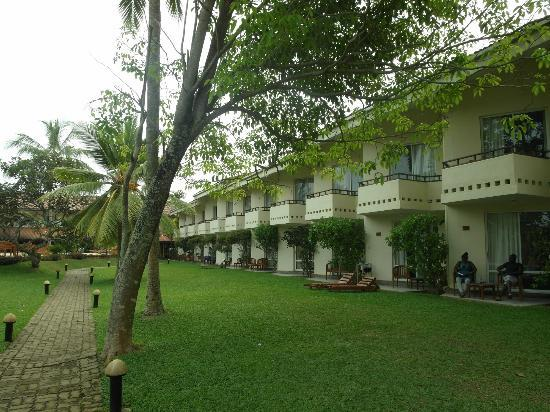 Hotel Hibiscus Beach: The hotel as seen from the garden