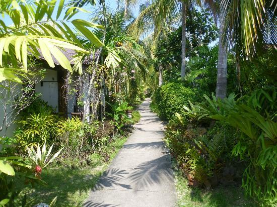 Sunset Beach Resort: Pathway leading to the rooms