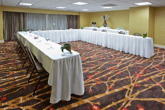 Holiday Inn Express & Suites Atlanta Downtown: Magnolia Meeting Room