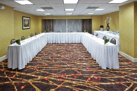 Holiday Inn Express & Suites Atlanta Downtown: Magnolia Meeting Room