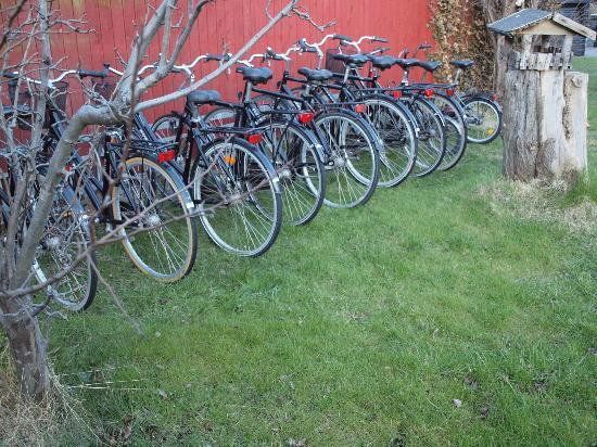 Badepension Marienlund: garden/bikes for rent