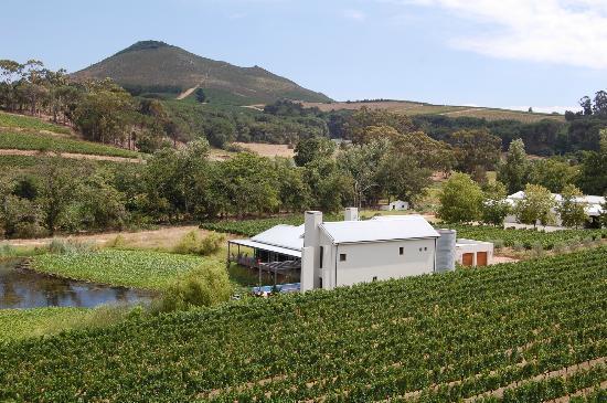 Laibach Vineyards Lodge: far view lodge