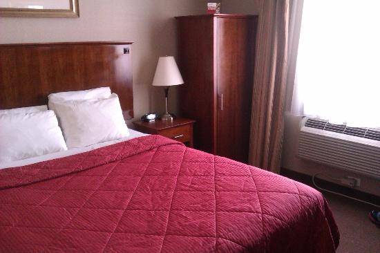 Comfort Inn LaGuardia Airport - 83rd St: Room w/queen bed (small but cozy)