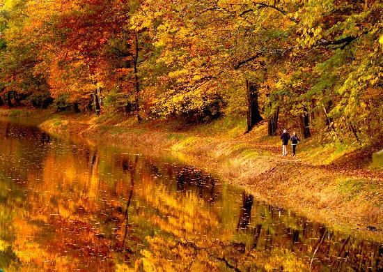 Bucks County Autumn (Reflections by Ruth)
