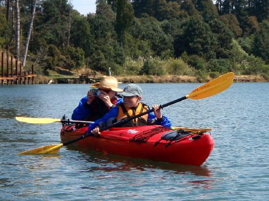 Liquid Fusion Kayaking: Wildlife watching on Fort Bragg's Noyo River