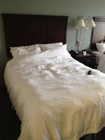 """Hampton Inn & Suites Syracuse Erie Blvd/I-690: queen bed with """"daily"""" changed duvet."""
