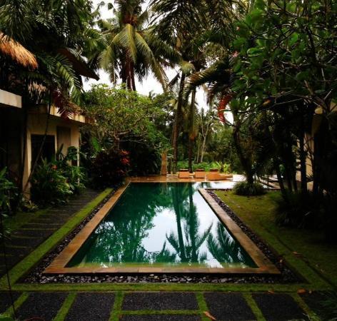 วิลลาอาเรโคล: Villa Areklo pool