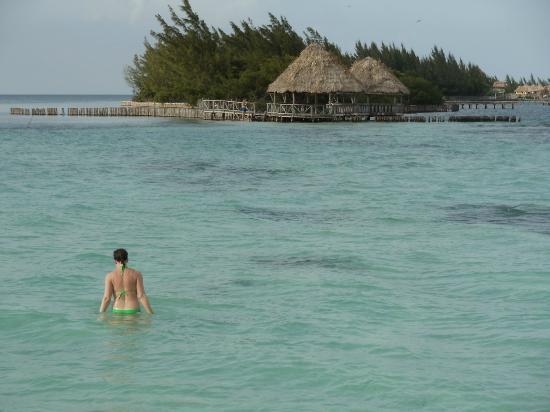 Coco Plum Island Resort: A short walk to the neighboring island