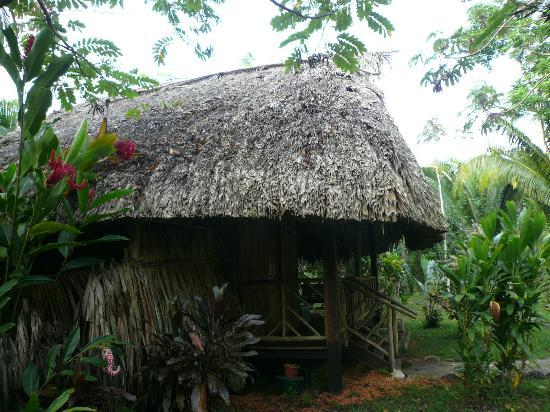 Sun Creek Lodge : Our room