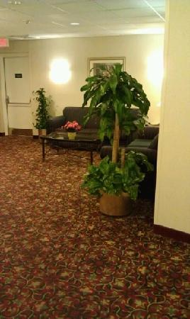 La Quinta Inn & Suites Boston-Andover: secure hall