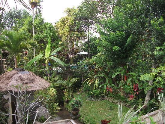 Alam Jiwa: gardens with pool in distance