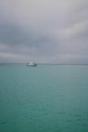 Crucian Gold : The beautiful waters around St. Croix!