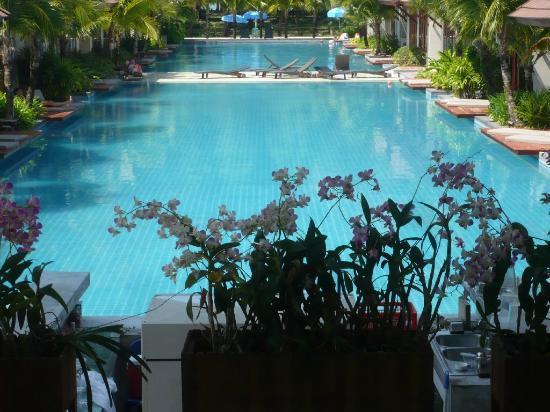 L'esprit de Naiyang Resort: Orchideen vor dem Pool