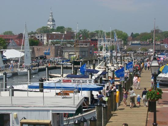 Annapolis, MD : Ego Alley from City Dock