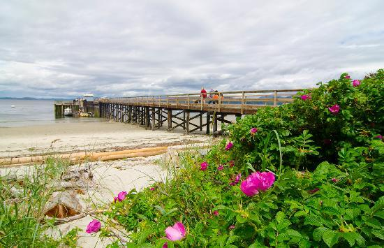 The Savary Island Resort: Sunny, Sandy Savary