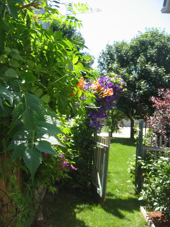 Globetrotters Bed and Breakfast: Relax in our garden.