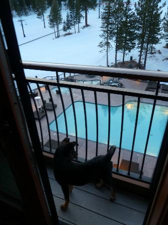 The Ritz-Carlton, Lake Tahoe: Slopeviews from the stepout