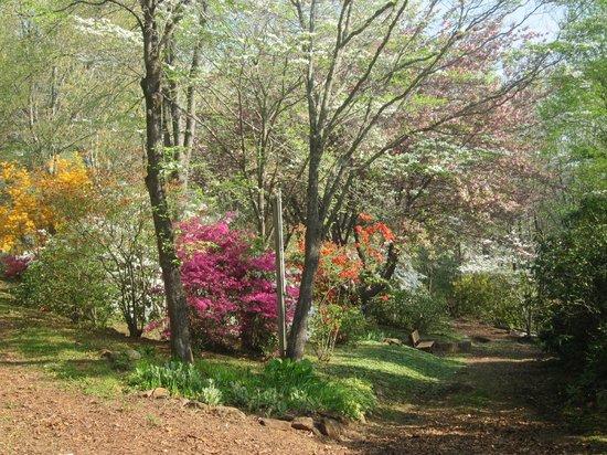 Fred Hamilton Gardens
