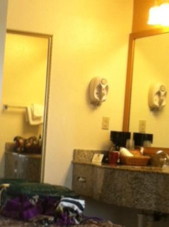 Best Western Sandman Motel : Dressing/sink area