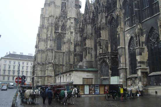 Fiaker picture of stephansplatz vienna tripadvisor for Tripadvisor vienna