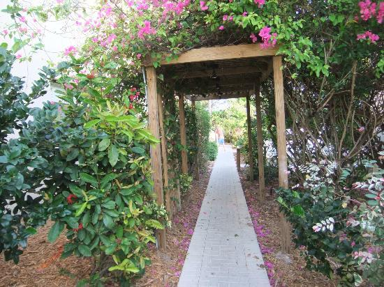 Casa del Mar Beach Resort: Beautiful landscaping